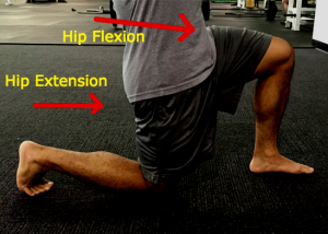 Hip Extension + Hip Flexion